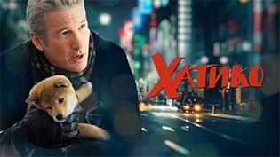 Фильм Хатико: Самый верный друг смотреть онлайн